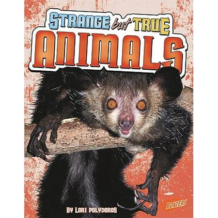 Weird But True Animals 2
