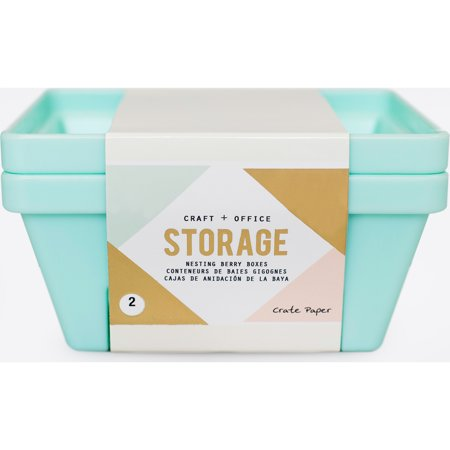 Desktop Storage Nesting Berry Containers 2/Pkg-Light Teal