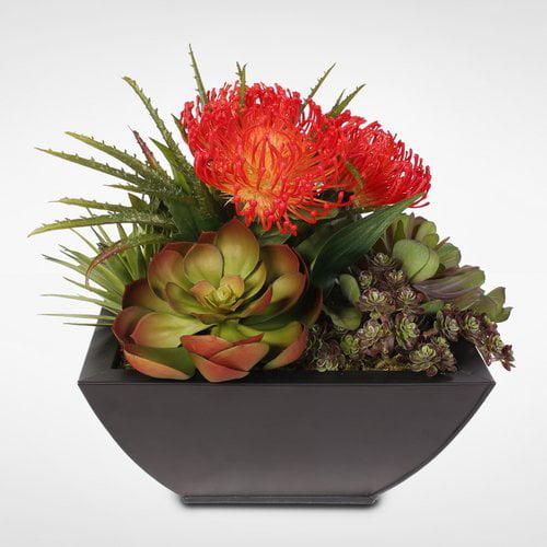 Brayden Studio Tropical Artificial Desktop Succulent Arrangement Plant in Planter