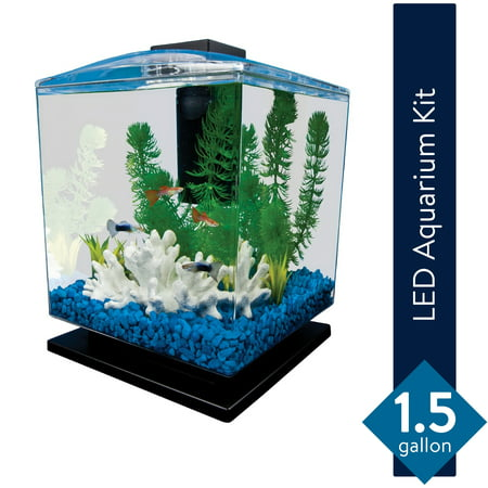 Tetra 1.5-Gallon Cube Aquarium Starter Kit