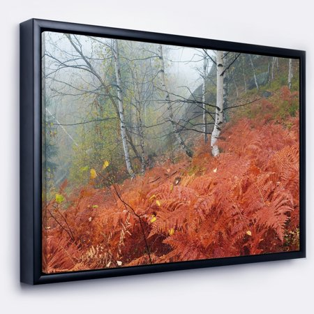 DESIGN ART Designart 'Red Fern in Foggy Fall Fay' Landscape Photo Framed Canvas Art Print