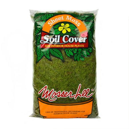 Mosser Lee ML0470 Sheet Moss Soil Cover, 675 sq.