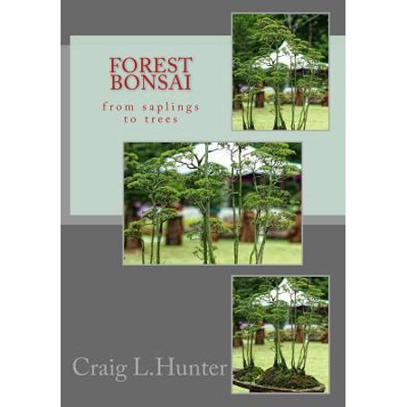 Forest Bonsai : From Saplings to Trees Bonsai Forest Wood