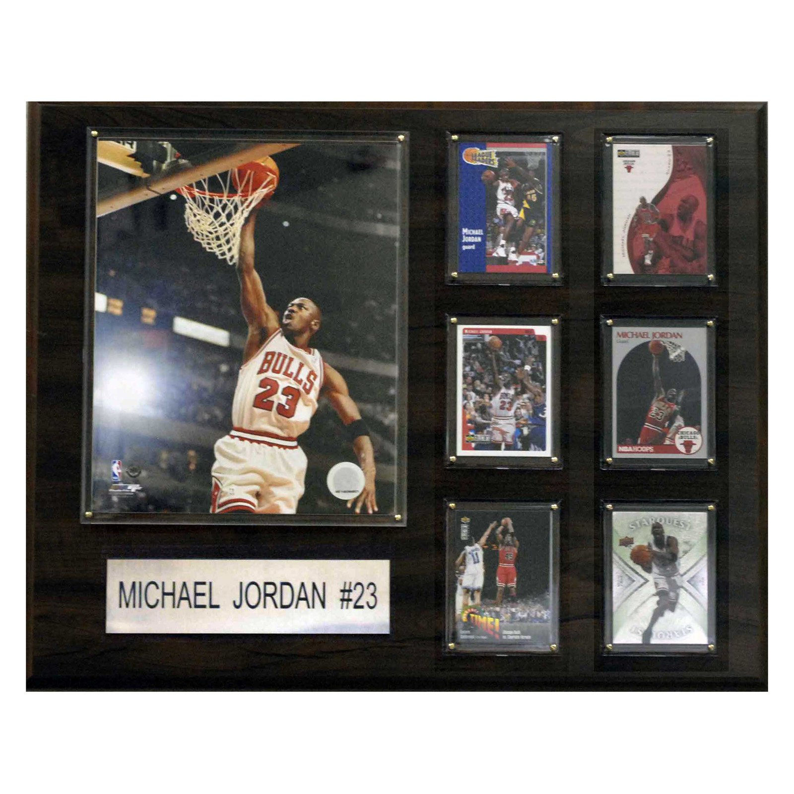 NBA Chicago Bulls Michael Jordan Career Stat Plaque