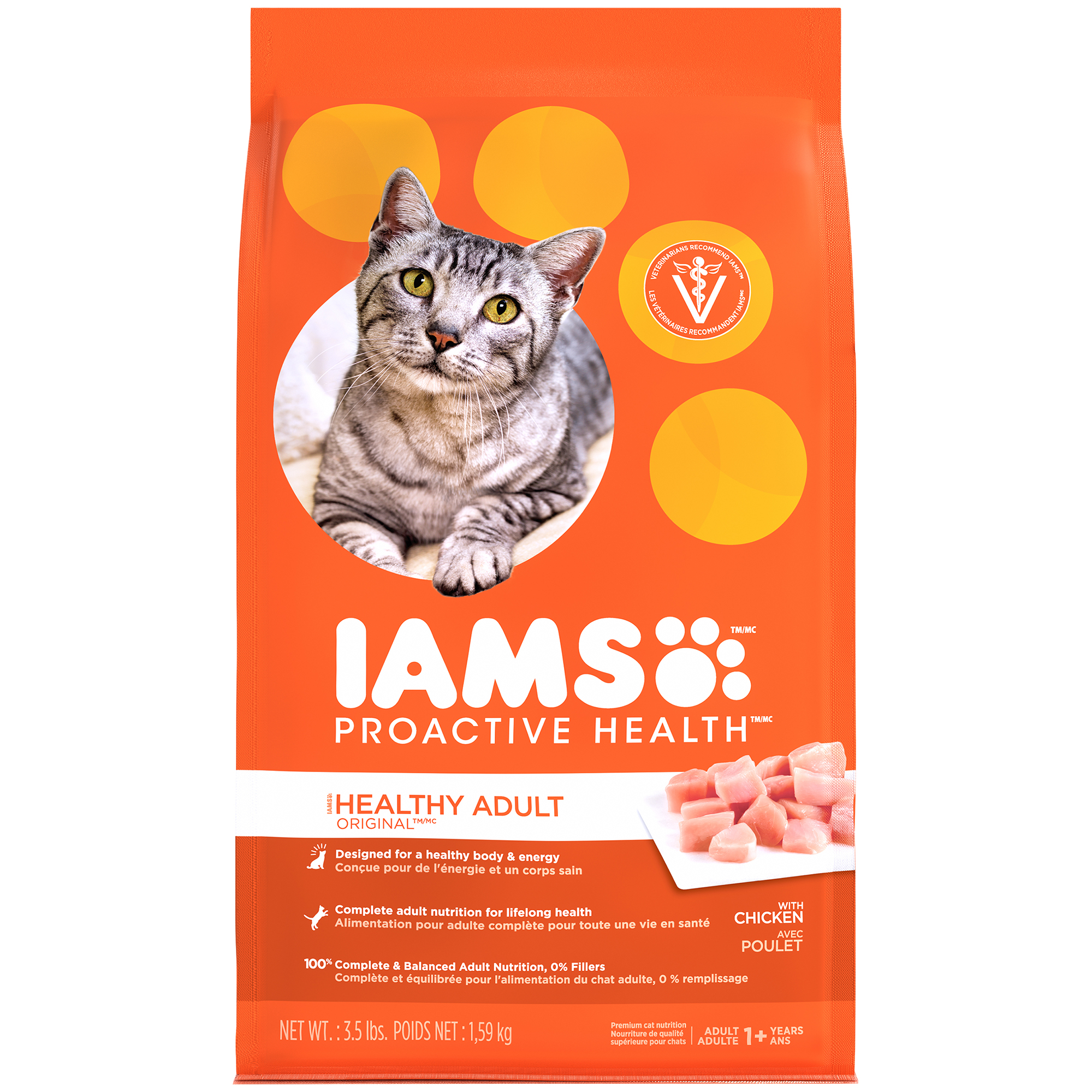 8 month cat adult food