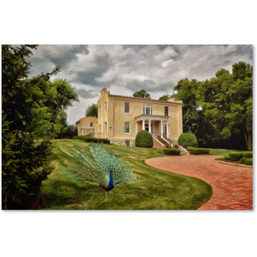 "Trademark Fine Art ""A Peacock on the Lawn"" Canvas Art by Lois Bryan"