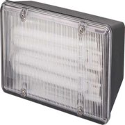 Monument Wall- Or Ceiling-Mounted Fluorescent Commercial Floodlight, Black, 2 13-Watt Pl Lamps (Included)