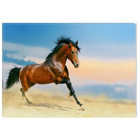 Arabian Horse Paintings - Startonight Canvas Wall Art Arabian Horse Running USA Design for Home Decor, Illuminated Animals Painting Modern Canvas Artwork Framed Ready to Hang Medium 23.62 X 35.43 inch