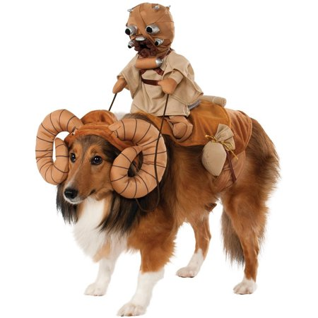 Halloween Pet Photos (Star Wars Bantha Rider Pet Halloween)