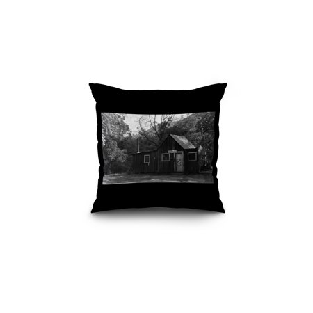 Salmon  California   View Of The Us Post Office Building At The Forks  16X16 Spun Polyester Pillow  Black Border