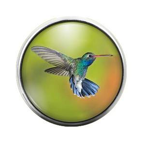 Graceful Hummingbird Charm (Hummingbird- 18MM Glass Dome Candy Snap Charm GD0071)