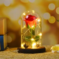 Outtop Romantic Immortal Flower Micro Landscape Rose Simulation Glass Shade Led Llight (HOT SALE)
