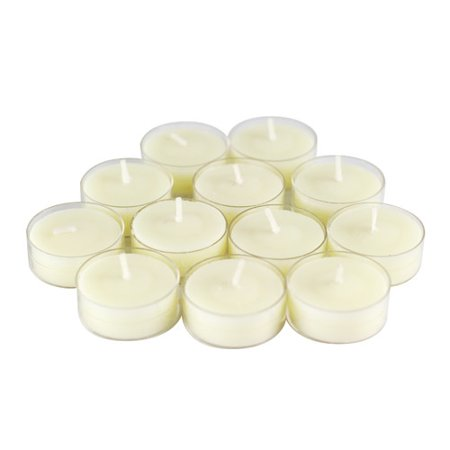 Winston Porter Scented Tea Light Candle in Vanilla Scented Ivory (Set of 12)