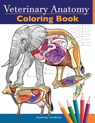 - Veterinary Anatomy Coloring Book : Animals Physiology Self-Quiz Color  Workbook For Studying And Relaxation - Perfect Gift For Vet Students And  Even Adults (Paperback) - Walmart.com - Walmart.com