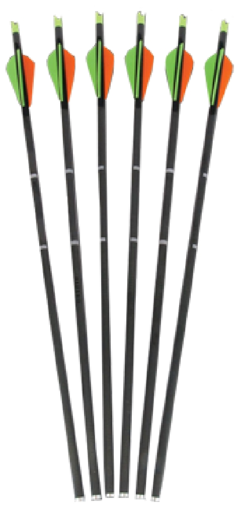 """Parker Bows Crossbow Bolt 20"""" Vanes Without Point by PARKER BOWS"""