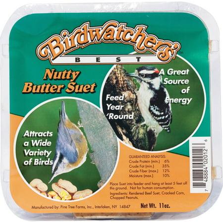 Pine Tree Farms Inc-Birdwatcher's Best Suet- Nutty Butter 11 Ounce (Case of 12