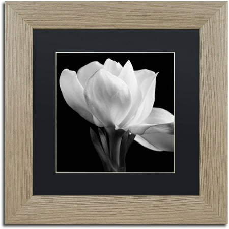 Works Gardenia - Trademark Fine Art
