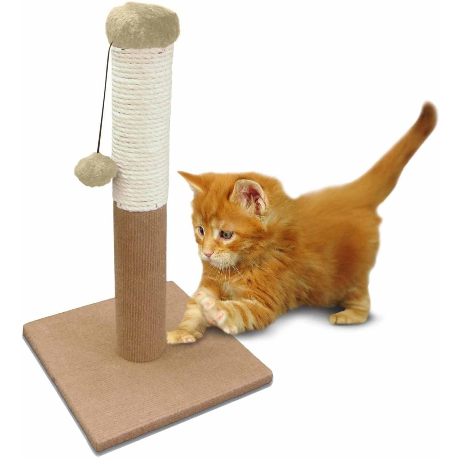 ASPCA Cat Tree Scratching Post Cat Toy, Blue by European Home Designs