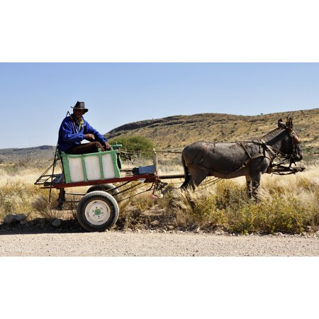 LAMINATED POSTER Namibia Donkey Wagon Africa Bauer Agriculture Poster Print 24 x (Downey Center)