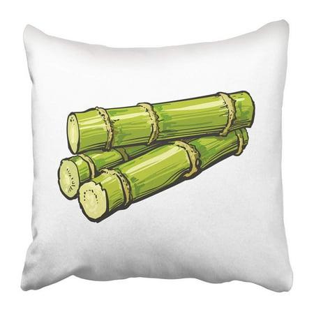White Jamaican Rum (BPBOP Pile of Fresh Raw Green Sugar Cane Sketch White Realistic Hand Drawing Sugarcane Jamaican Rum Pillowcase Pillow Cushion Cover 20x20 inch)