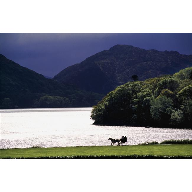Posterazzi DPI1829285LARGE Horse & Buggy by Waterfront Poster Print by Gareth McCormack, 36 x 24 - Large - image 1 of 1