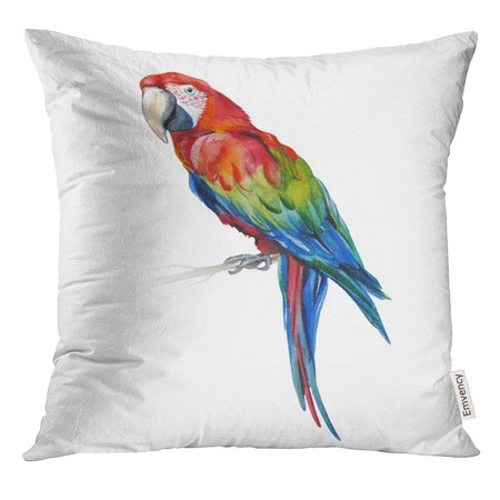 Tailed Tropic Bird - CMFUN Scarlet Macaw Parrot Ara Macao Watercolor of Tropical Bird Trendy with Tropic Summertime Exotic Pillow Case 20x20 Inches Pillowcase