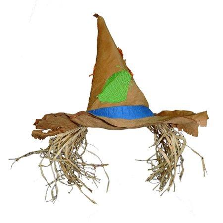 Raggedy Scarecrow Patched Costume Hat w/ Raffia Hair (Raggedy Ann Hair)