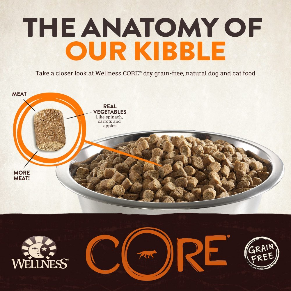 Wellness Core Natural Dry Grain Free Puppy Food Chicken Amp