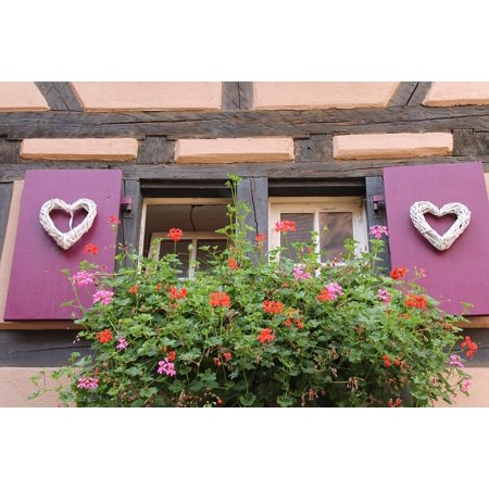 Shutters Window Boxes - LAMINATED POSTER Geranium Flower Box Purple Shutters Window Truss Poster Print 24 x 36