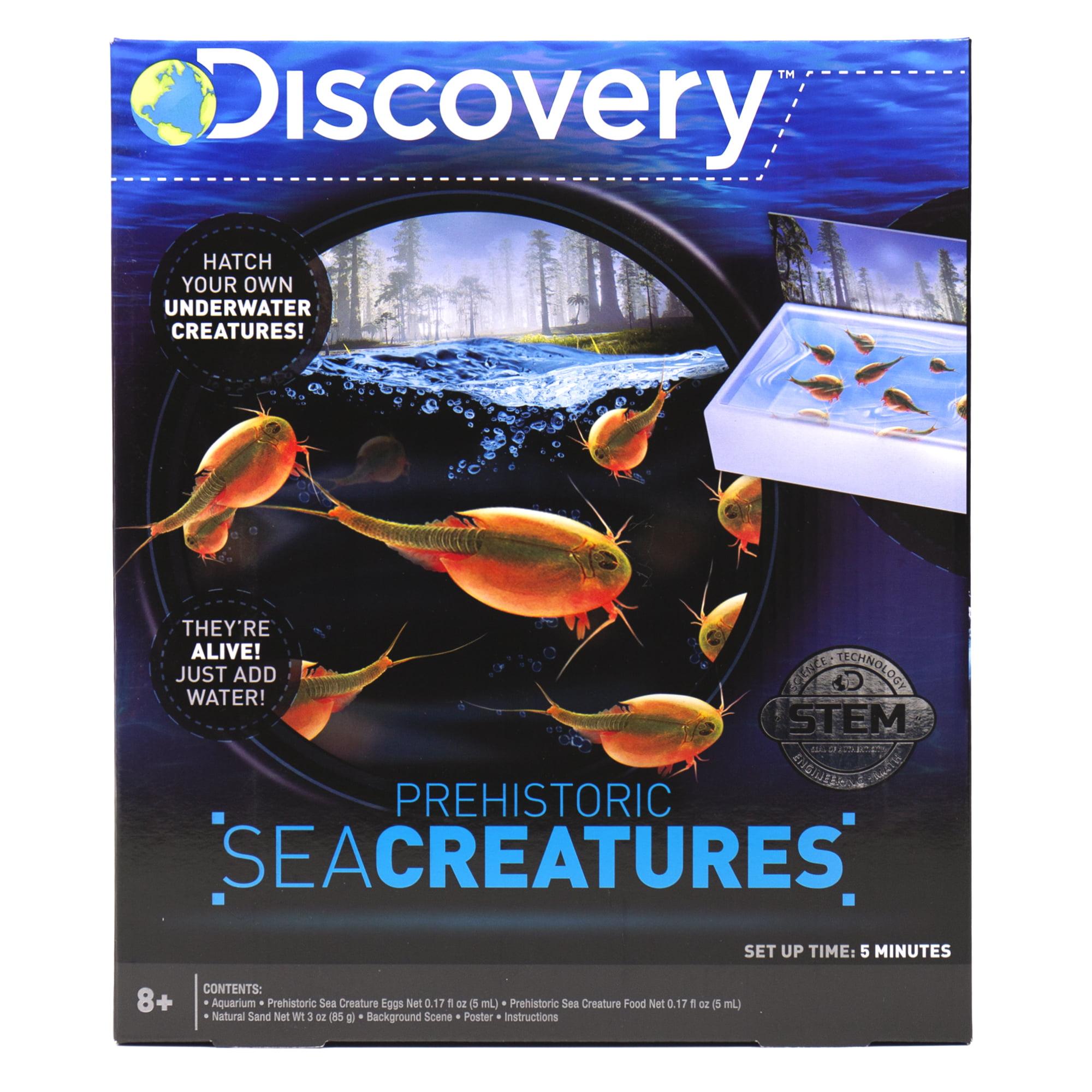 Discovery Prehistoric Sea Creatures Sea Creatures Hatch And Grow 8 Walmart Com Walmart Com