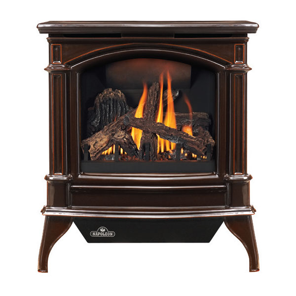 GDS60-1NNSB Napoleon Direct Vent Cast-Iron Gas Stove by Napoleon