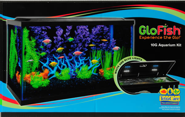 Glow fish tank images galleries with for Glow in the dark fish walmart
