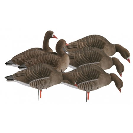 Greenhead Gear Pro-Grade Full Body Specklebelly Decoy,Harvester Pack,1/2 Dozen 7