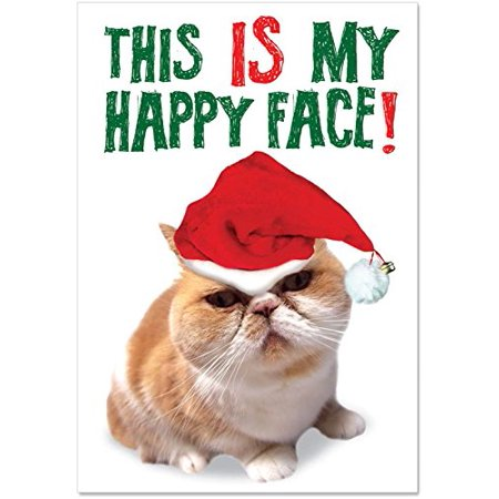 'B5940 Happy Face Christmas' Box Set of 12 Funny Merry Christmas Note Cards with Envelopes by