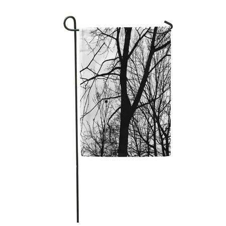 LADDKE White Black Silhouette of Bare Branches Trees on Autumn Garden Flag Decorative Flag House Banner 12x18 inch - Bare Tree Silhouette Halloween