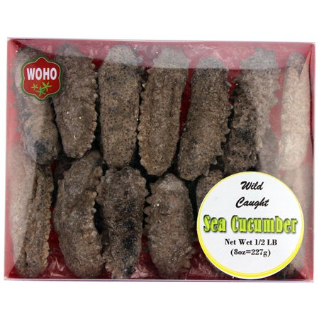 American Wild Caught Medium Size Sea Cucumber - 8