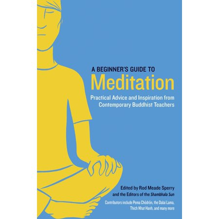 A Beginner's Guide to Meditation : Practical Advice and Inspiration from Contemporary Buddhist