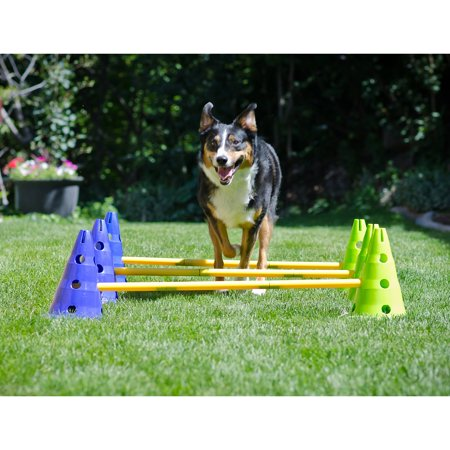 FitPAWS CanineGym Gear Agility (Agility Package)