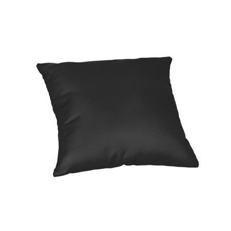 Sunbrella Square 20 in. Outdoor Throw Pillow - Canvas Black