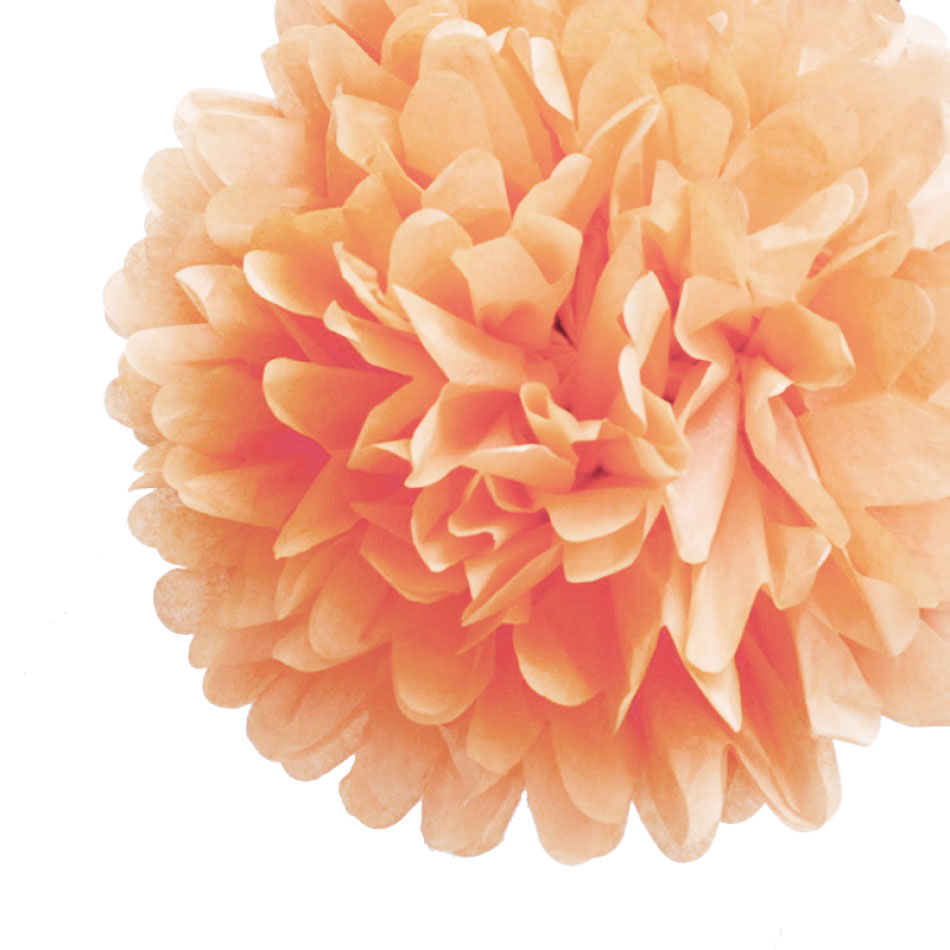 "Quasimoon EZ-FLUFF 16"" Blush Tissue Paper Pom Poms Flowers Balls, Hanging Decorations (4 Pack) by PaperLanternStore"