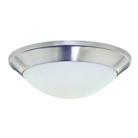 - Dolan Designs Rainier 1-Light Flush Mount