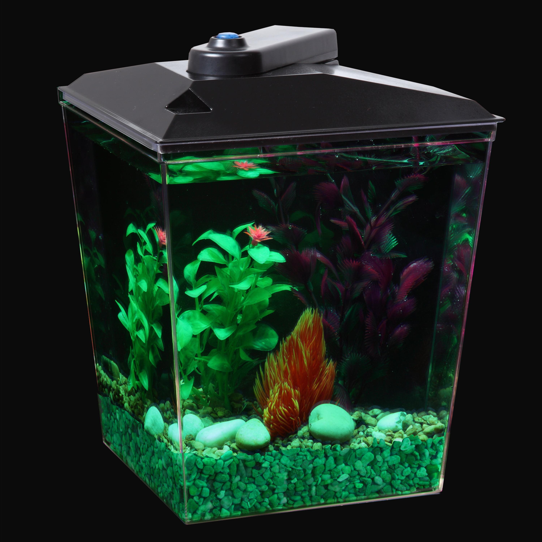 Aqua Culture Corner Aquarium Kit with LED Light and Power Filter ...