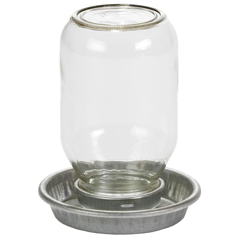 LITTLE GIANT MASON JAR BABY CHICK WATERER CLEAR 1 QUART