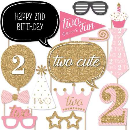 Two Much Fun Girl 2nd Birthday Party Photo Booth Props Kit 20
