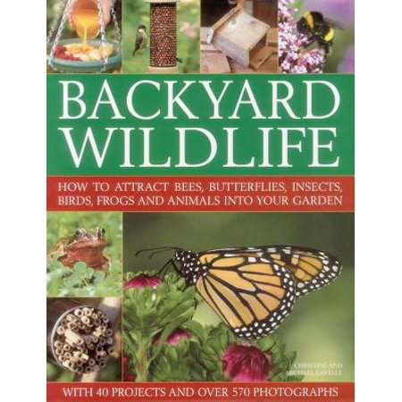 Backyard Wildlife : How to Attract Bees, Butterflies, Insects, Birds, Frogs and Animals Into Your Garden - Insect Animals