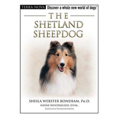 The Shetland Sheepdog - eBook