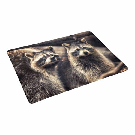 YUSDECOR Cute Raccoons in Zoological Garden Funny Animal Doormat Rug Home Decor Floor Mat Bath Mat 23.6x15.7 inch - image 3 of 3