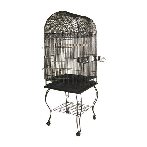 "A & E Cage Company Wrought Iron Dome Top Bird Cage, 20"" x 20"" x 58\ by A and E Cage Co LLC"