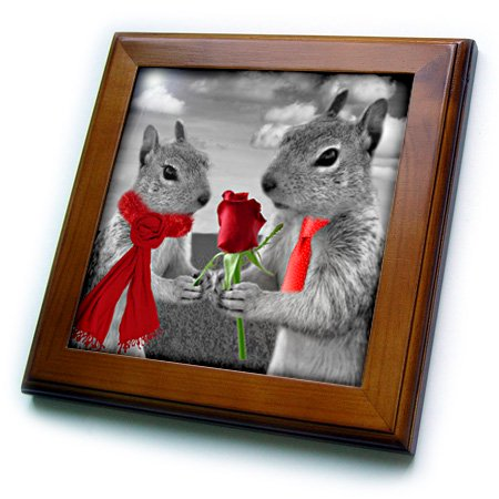 3dRose Squirrel Couple in Love with Red Rose Black and White Photograph - Framed Tile, 6 by 6-inch (Couple Photo)