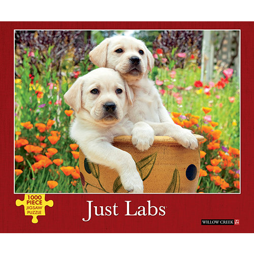 Just Labs 1000 Piece Puzzle